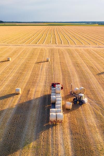 Start of the 3PL Food Logistics process at the farm
